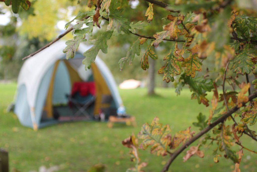野外でテントが張られている
