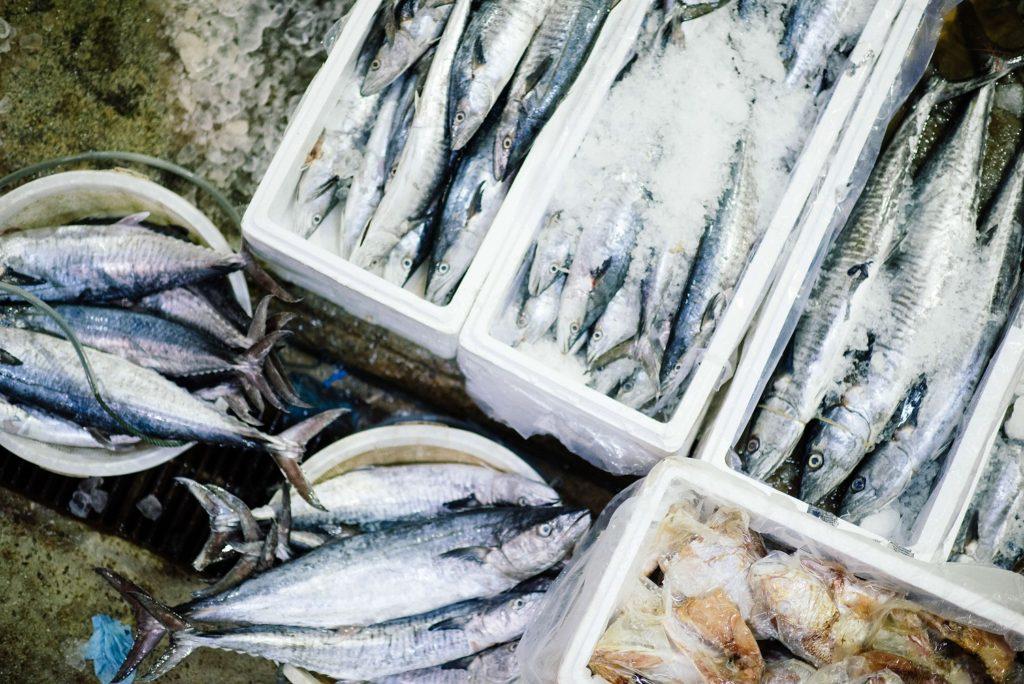 市場に並ぶ青魚